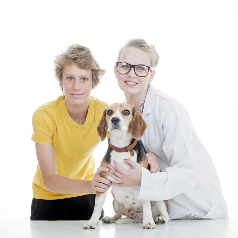 Veterinario y perro casero del niño imagenes de archivo