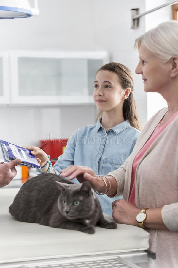 Girl receiving document from doctor while standing by senior woman with cat in veterinary clinic royalty free stock image