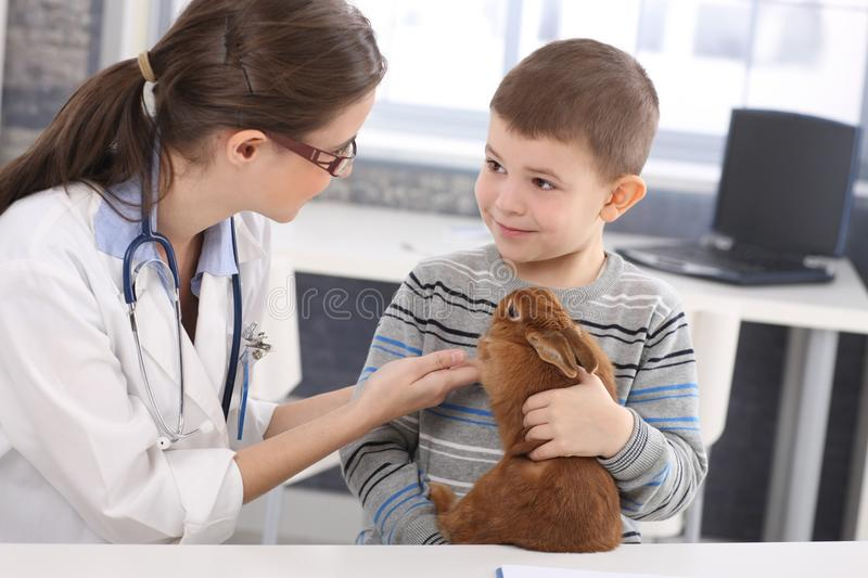 Veterinary and kid discussing rabbit treatment stock image