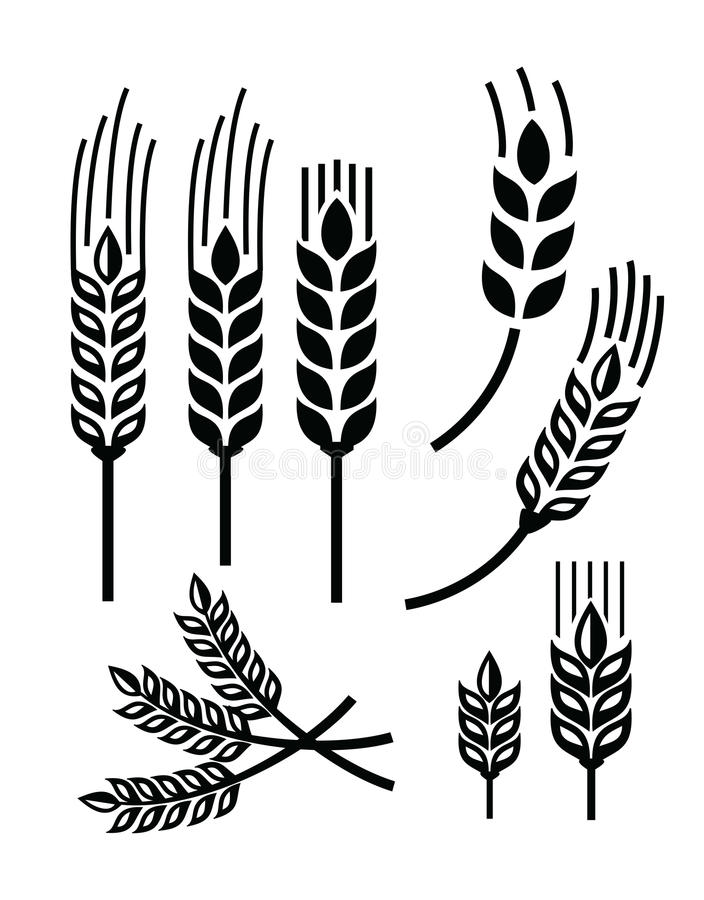 Vetesymbol royaltyfri illustrationer