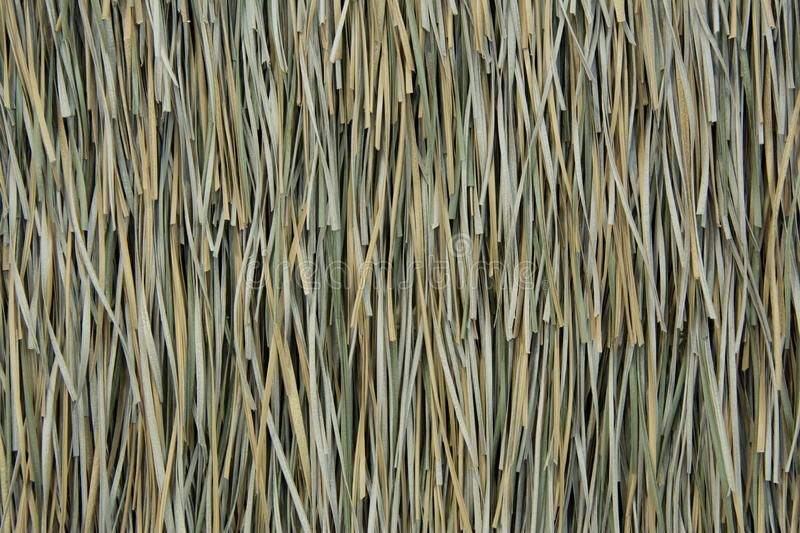 Vetiver roof texture royalty free stock image