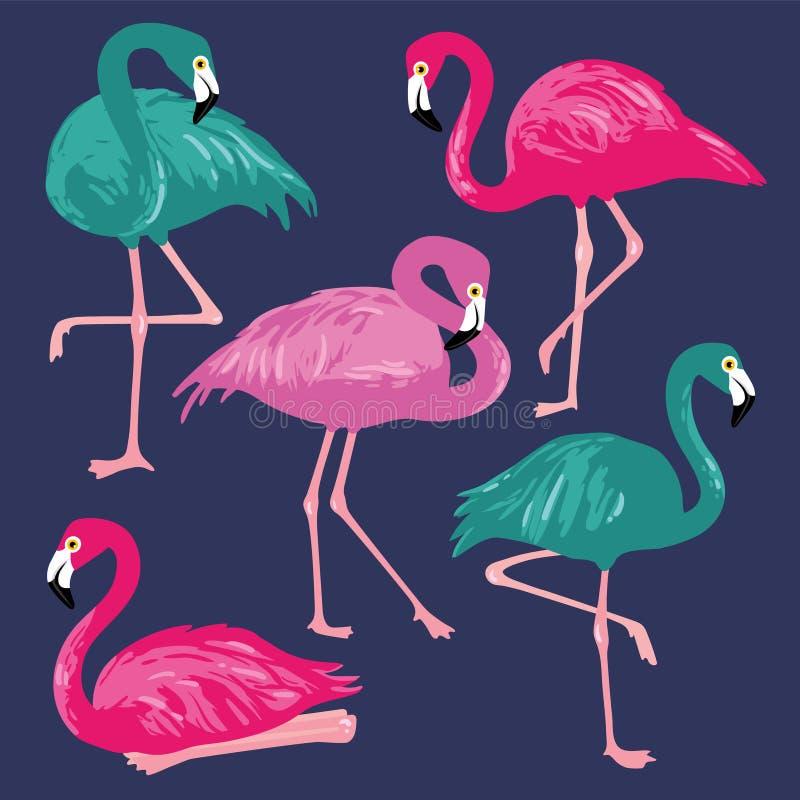 Vetor ajustado com flamingos cor-de-rosa Ilustração desenhada mão ilustração do vetor