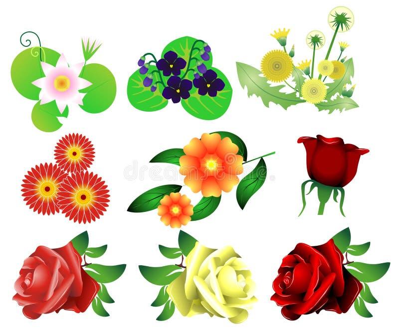 Vetor ajustado da flor ilustração do vetor