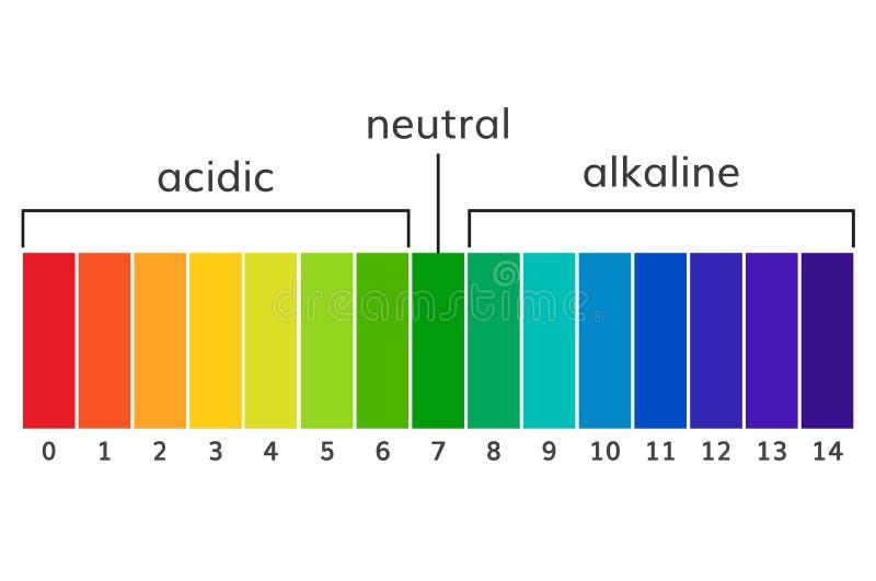 Vetor alcalino e ácido do pH da carta da escala ilustração royalty free