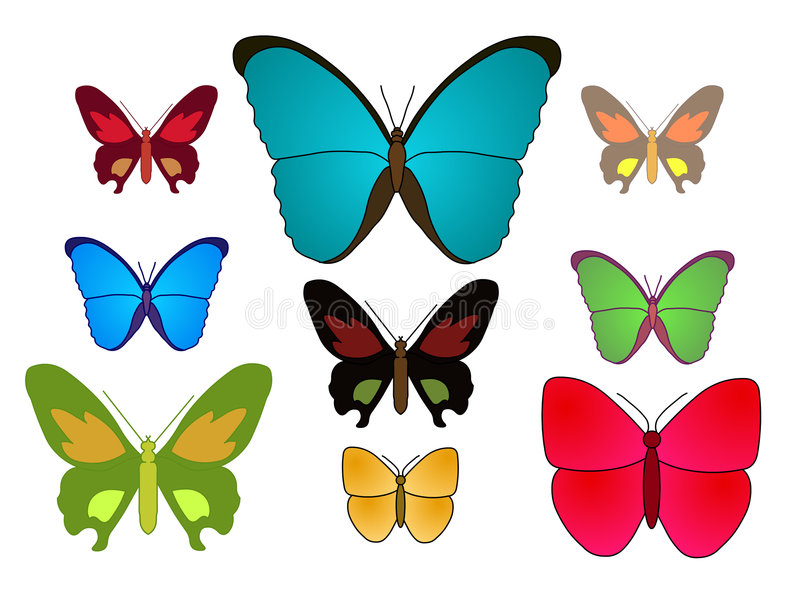 Vetor - borboleta imagem de stock