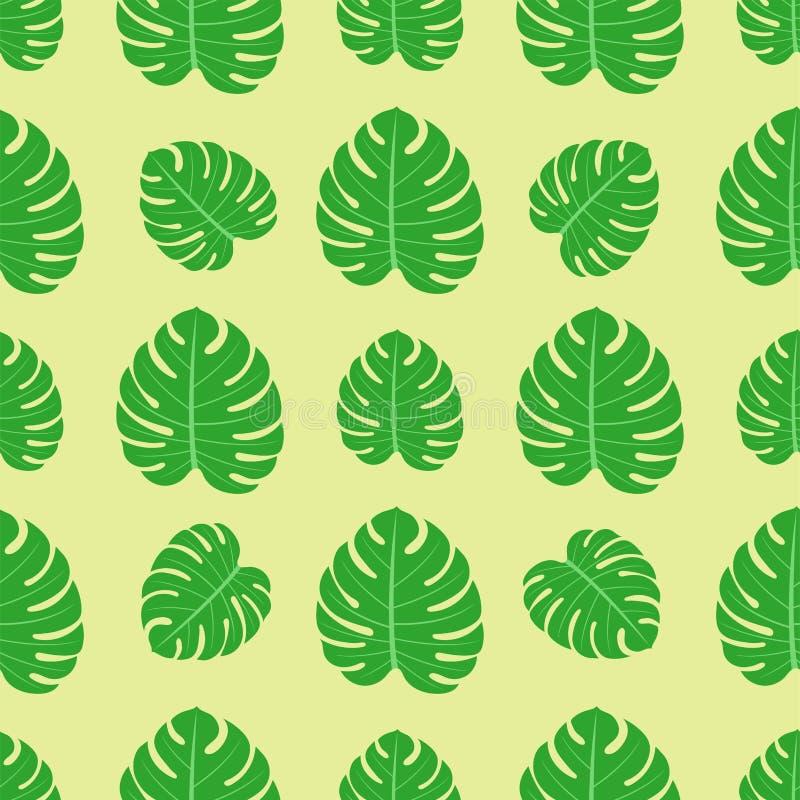 Vetor botânico da flora do monstera sem emenda exótico em folha de palmeira tropical de Havaí do teste padrão do verde da selva d ilustração stock