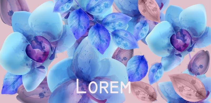 Vetor da aquarela das orquídeas azuis Bandeira das flores Background Teste padrão floral Cores na moda pasteis ilustração royalty free