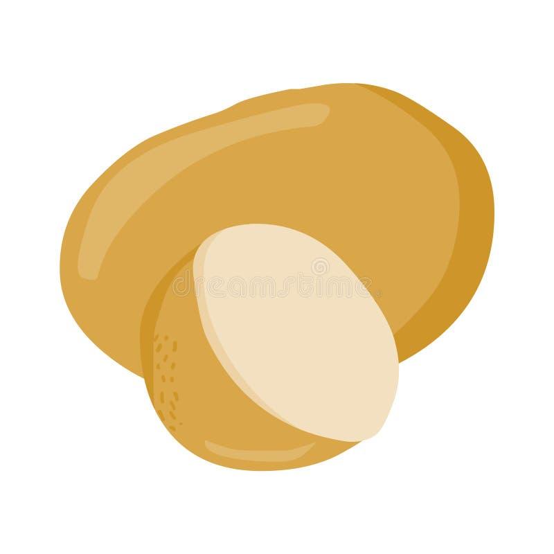 Vetor da batata Ilustração fresca da batata ilustração stock
