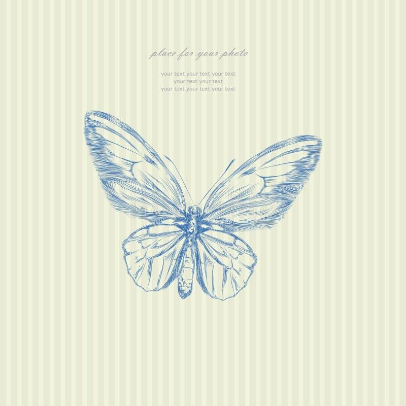 Vetor da borboleta do esboço do desenho da mão ilustração do vetor