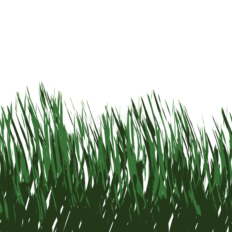 Vetor da grama verde ilustração royalty free