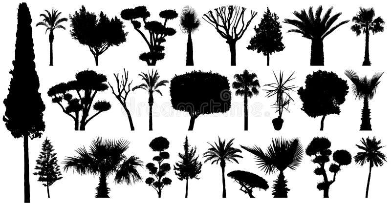 Vetor da silhueta do grupo das árvores Coleção das plantas e dos arbustos Isolado em um fundo branco ilustração do vetor