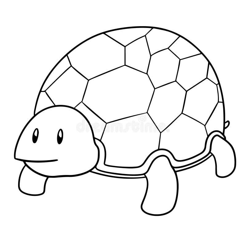 Vetor da tartaruga ilustração stock