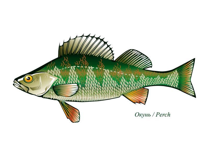 Vetor da vara dos peixes ilustração royalty free
