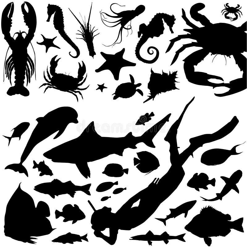 Vetor da vida marinha ilustração royalty free