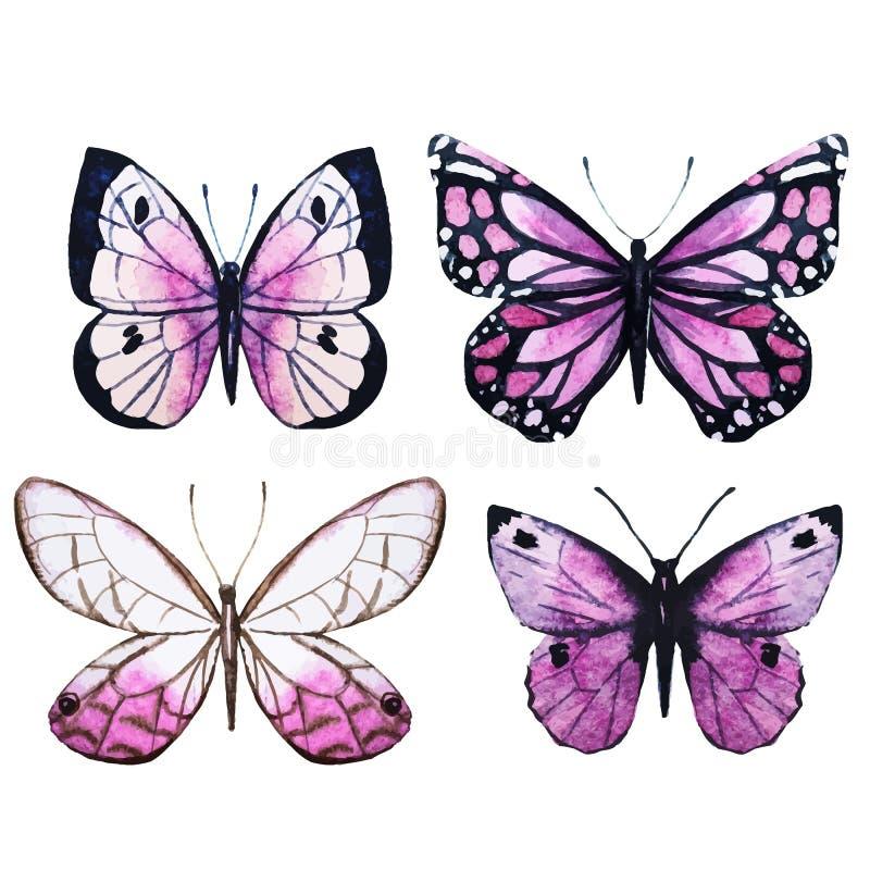 Vetor das borboletas da aquarela ilustração do vetor