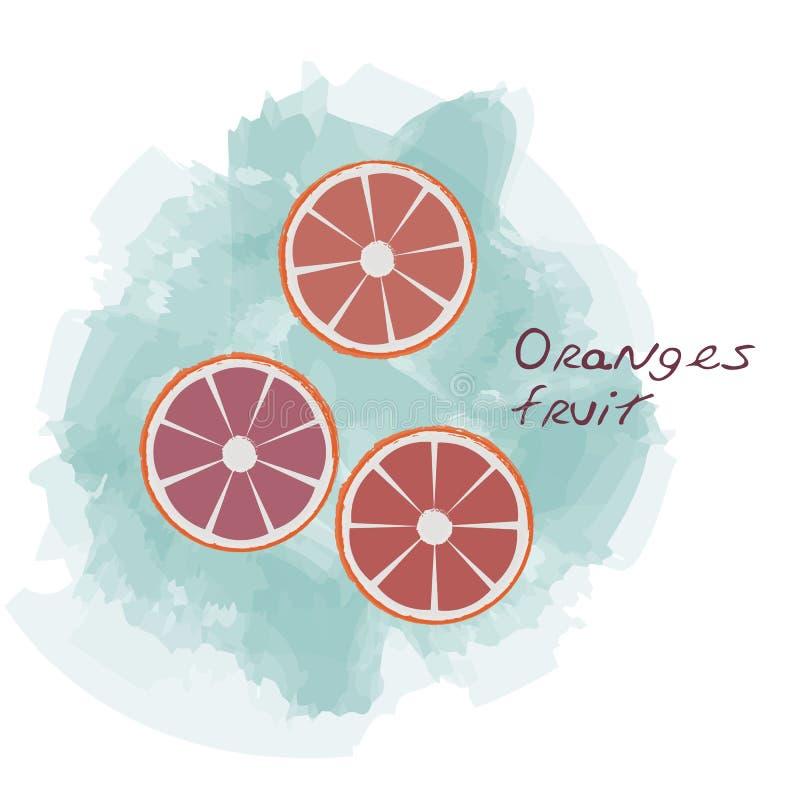 Vetor das laranjas foto de stock