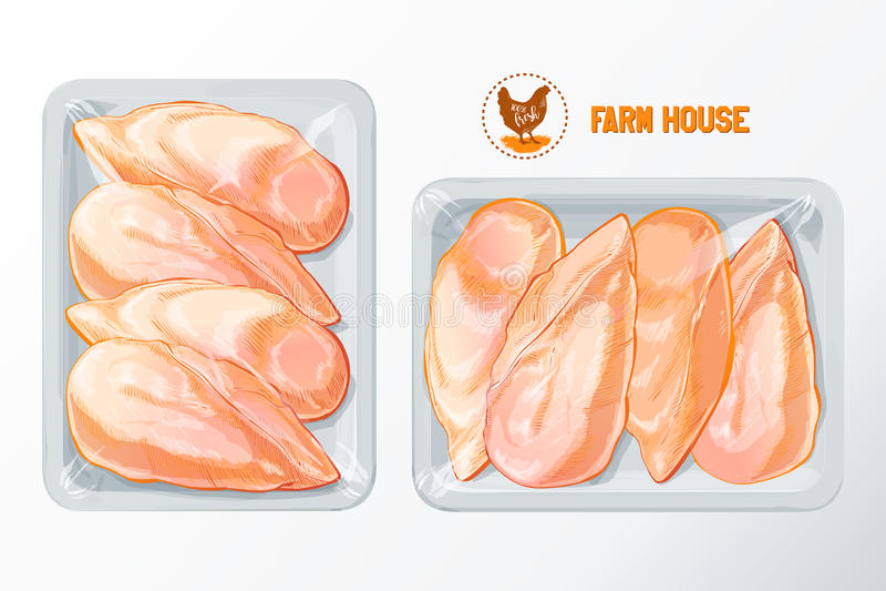 Vetor de empacotamento do poliestireno do peito de frango ilustração do vetor