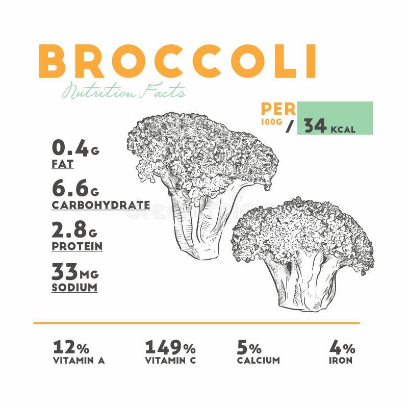 Vetor de fatos da nutrição dos brócolis ilustração do vetor