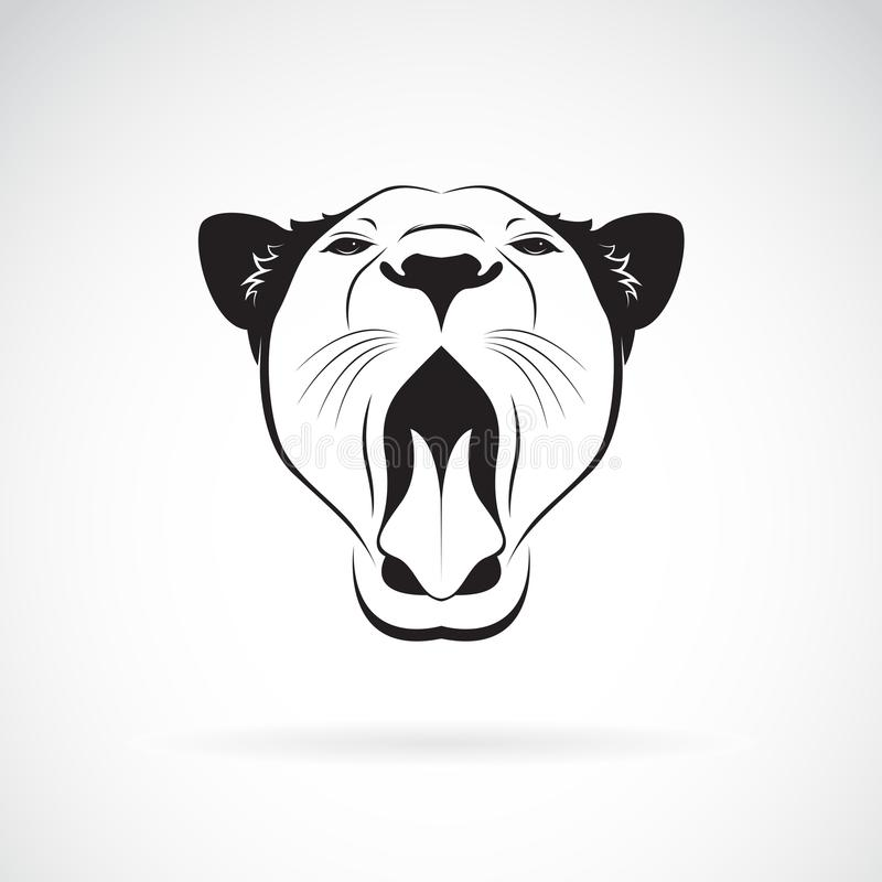 Vetor de uma boca aberta do leão fêmea no fundo branco ilustração royalty free