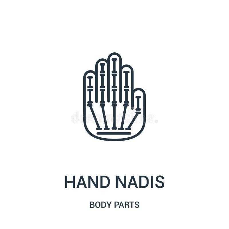 vetor do ícone dos nadis da mão da coleção das partes do corpo Linha fina ilustração do vetor do ícone do esboço dos nadis da mão ilustração stock