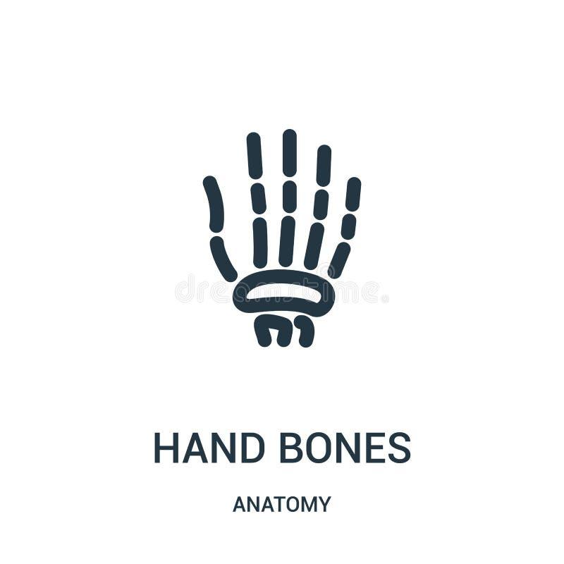 vetor do ícone dos ossos de mão da coleção da anatomia Linha fina ilustração do vetor do ícone do esboço dos ossos de mão Símbolo ilustração royalty free