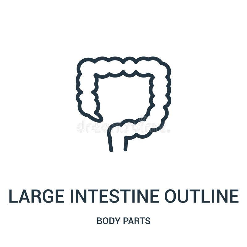 vetor do ícone do esboço do grande intestino da coleção das partes do corpo Linha fina ilustração do vetor do ícone do esboço do  ilustração royalty free