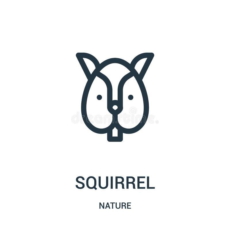 vetor do ícone do esquilo da coleção da natureza Linha fina ilustração do vetor do ícone do esboço do esquilo Símbolo linear para ilustração royalty free