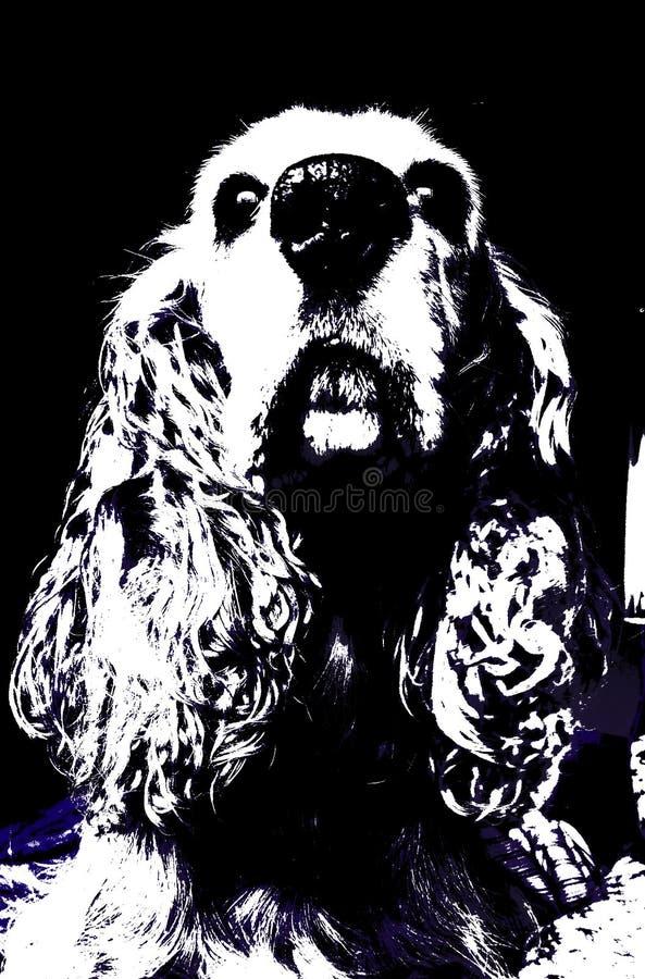 Vetor do cão de cocker spaniel ilustração royalty free
