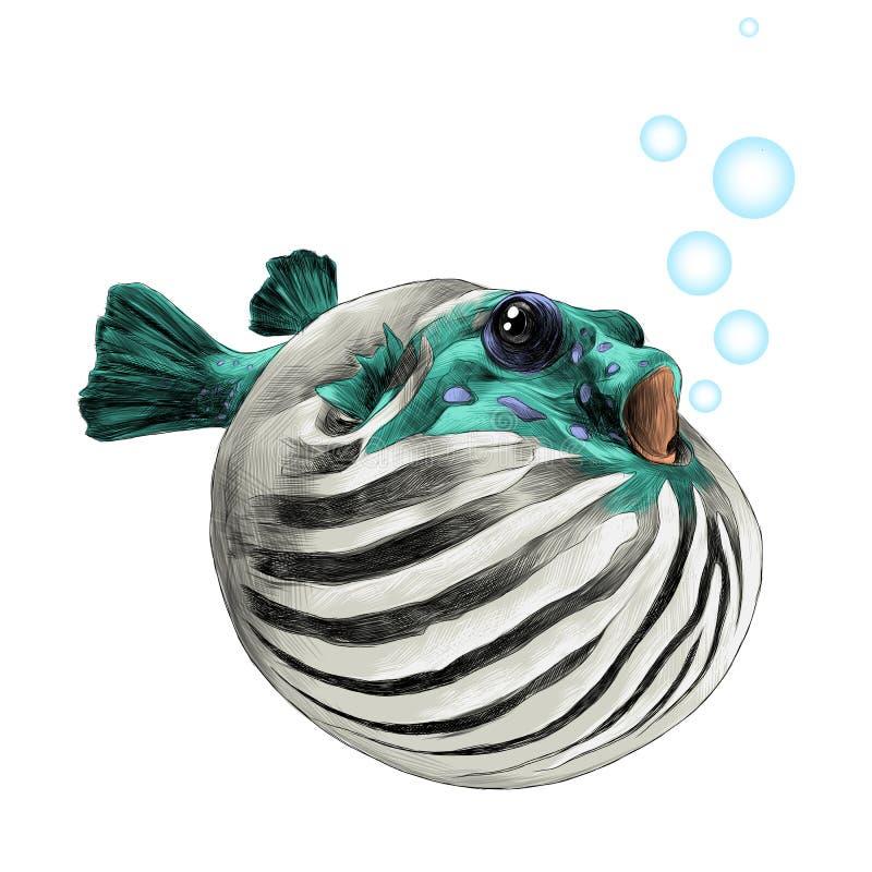Vetor do esboço da bolha do arothron dos peixes ilustração do vetor