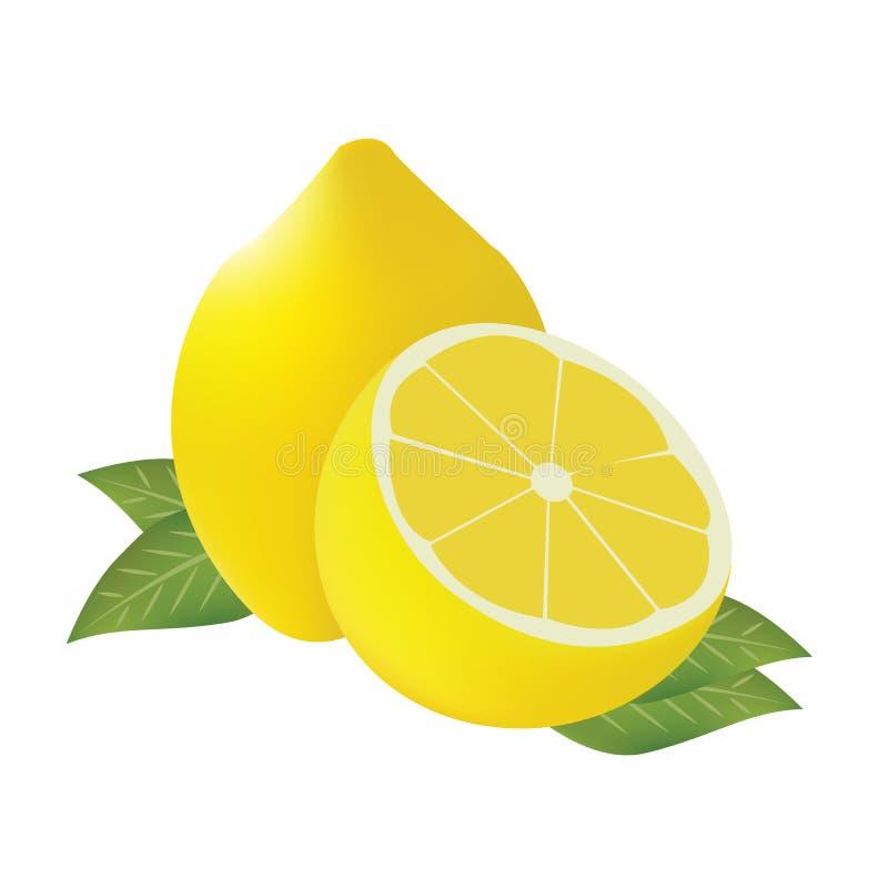 Vetor do limão fotos de stock