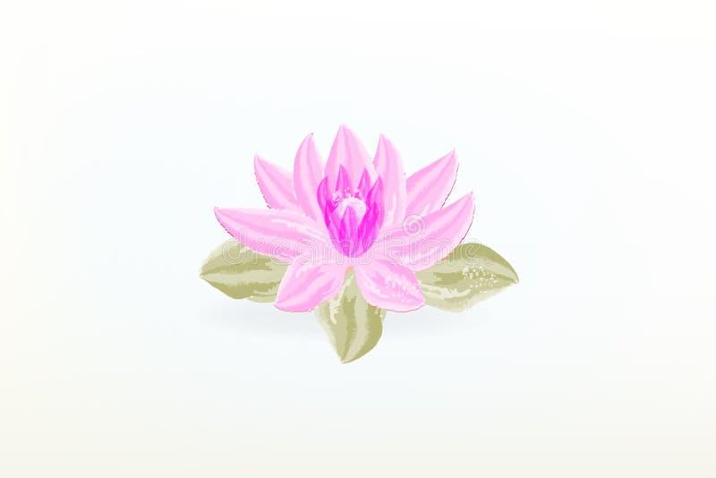 Vetor do logotipo da aquarela da flor de Lotus ilustração do vetor