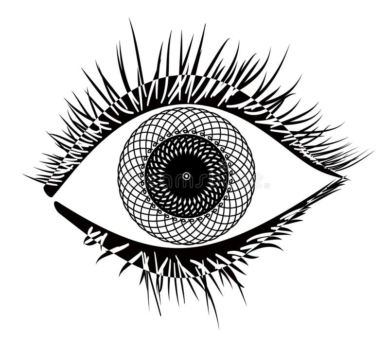 Vetor do olho ilustração royalty free