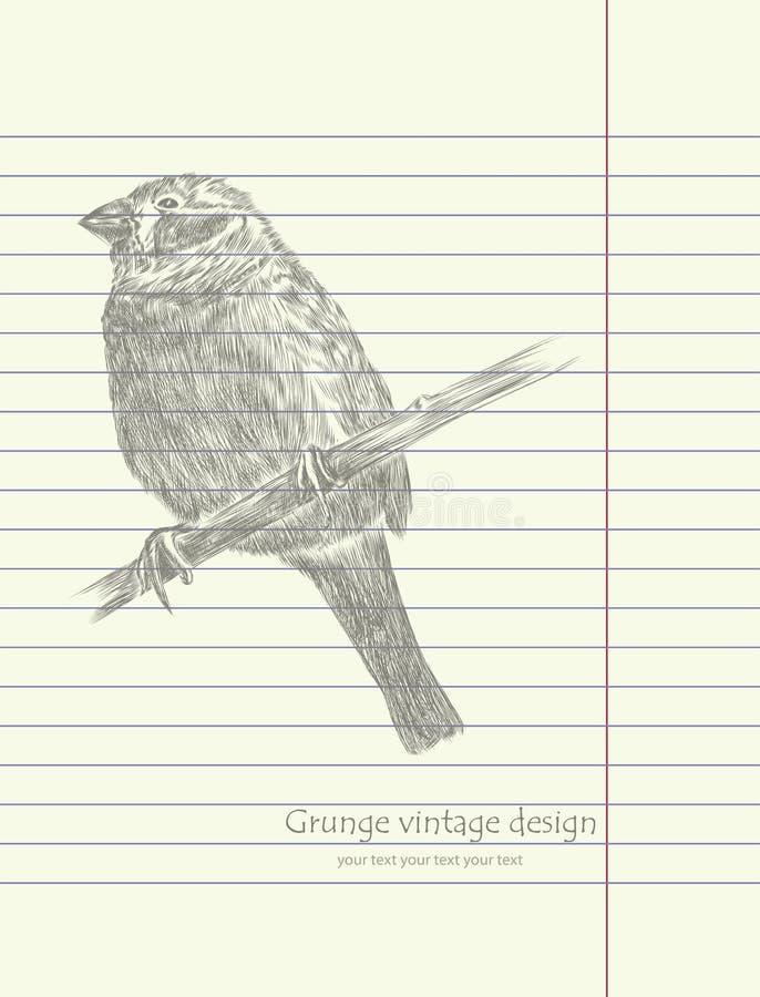 Vetor do pássaro do esboço do desenho da mão ilustração do vetor