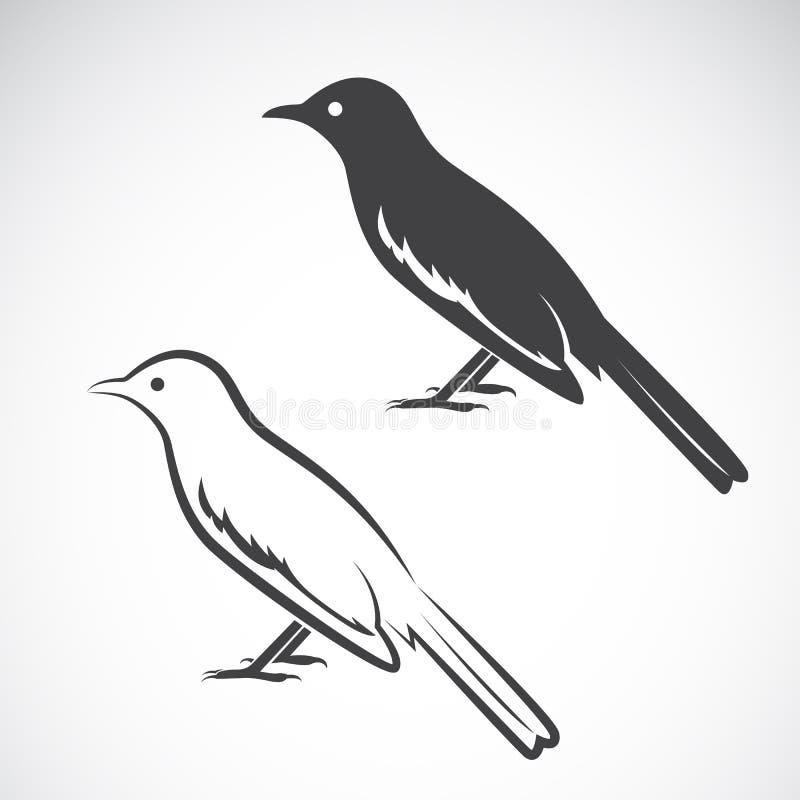 Vetor do projeto da pega no fundo branco Ícone do pássaro ilustração stock