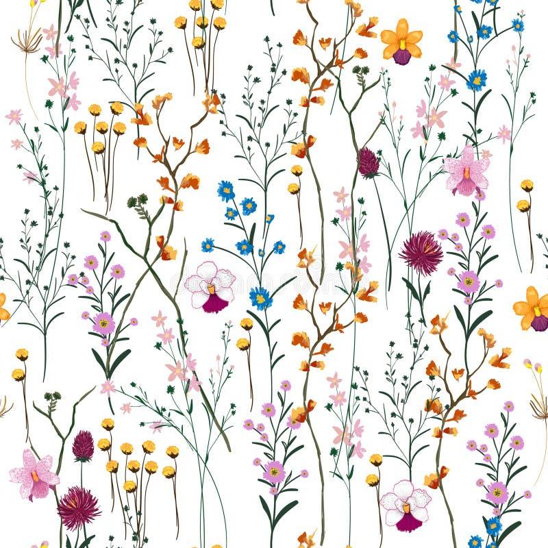 Vetor do verão muito tipo de bonito sem emenda das flores selvagens no wh ilustração do vetor