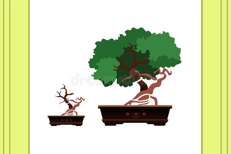 Vetor dos bonsais fotografia de stock royalty free
