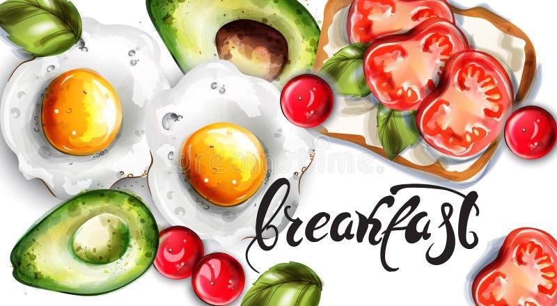 Vetor dos ovos, do abacate e do brinde do café da manhã Moldes frescos do cart?o do menu ilustração do vetor