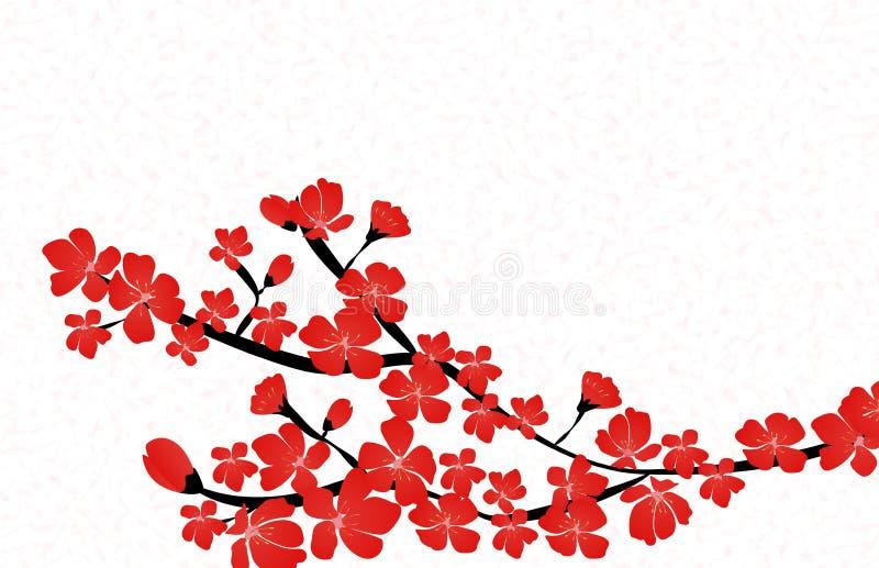 Vetor floral abstrato de Sakura Flower Japanese Natural Background ilustração stock