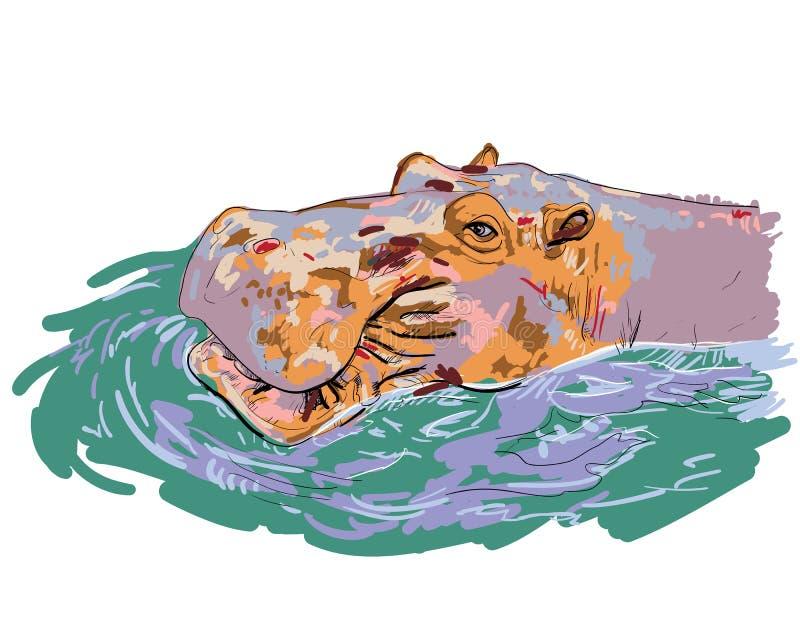 Vetor-Hippopotamus ilustração royalty free