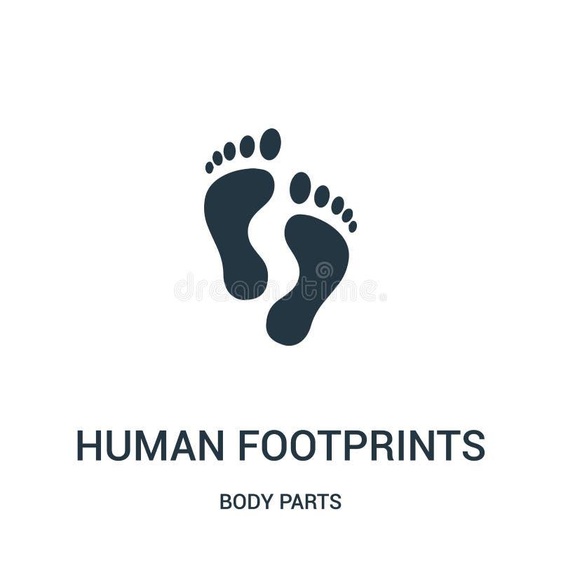 vetor humano do ícone das pegadas da coleção das partes do corpo Linha fina ilustração humana do vetor do ícone do esboço das peg ilustração royalty free