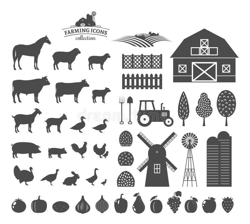 Vetor que cultiva ícones e elementos do projeto ilustração do vetor