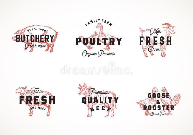 Vetor retro Logo Templates Collection do gado e das aves domésticas da qualidade superior Animais domésticos e pássaros tirados m ilustração royalty free