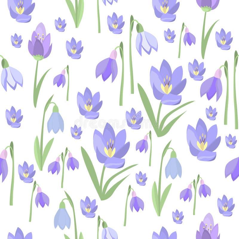 Vetor roxo das flores da beleza do açafrão da mola adiantada e da natureza dos snowdrops ilustração royalty free