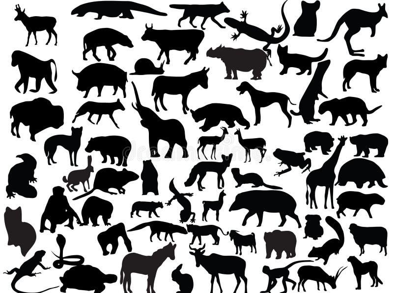 Vetores dos animais foto de stock royalty free