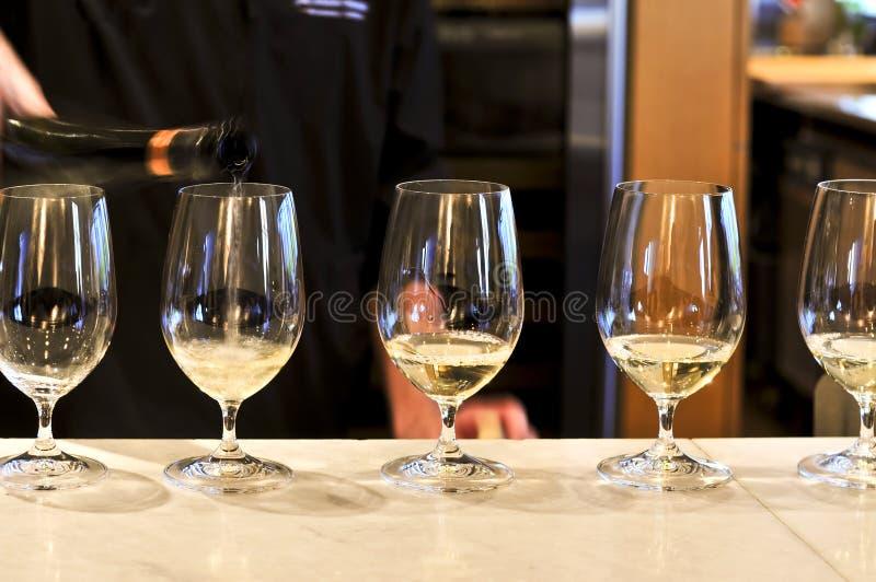 Vetri dell'assaggio di vino immagine stock libera da diritti