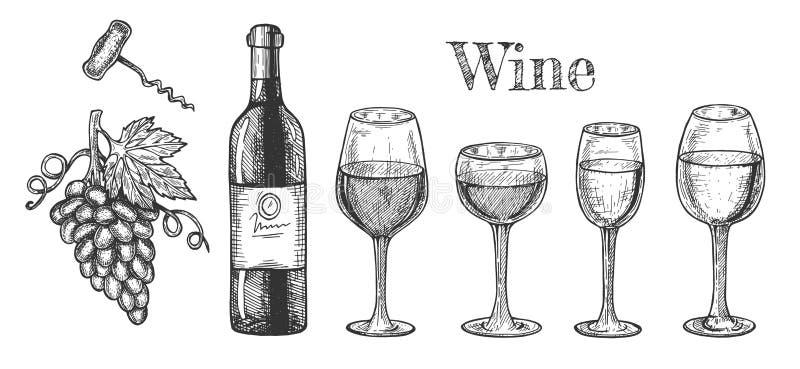 Vetri di vino, bottiglia, insieme del ramo dell'uva illustrazione di stock