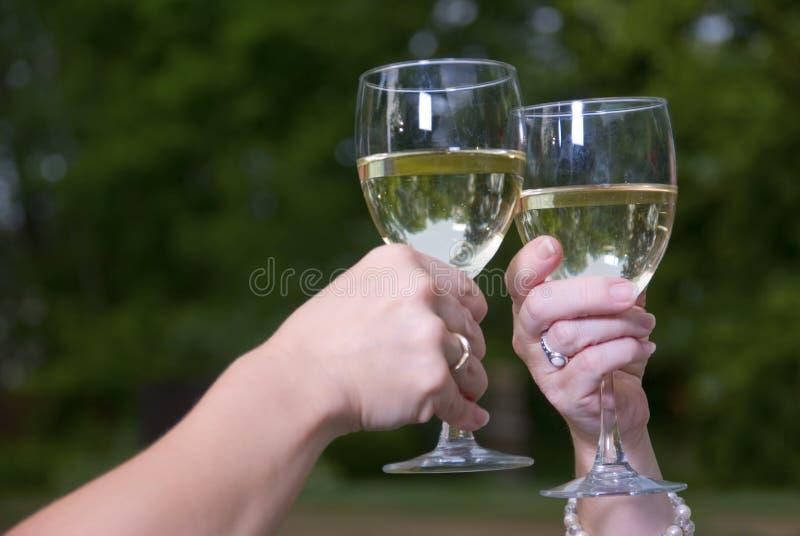 Vetri e Chardonnay del pane tostato del vino all'aperto fotografia stock