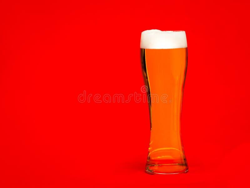 Vetro alto di birra chiara o di birra con la testa su fondo rosso immagine stock libera da diritti