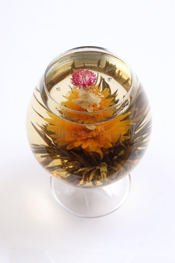Vetro con un tè verde del fiore fotografie stock libere da diritti