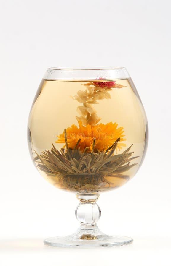 Vetro con un tè verde del fiore fotografia stock